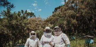 accessoire en cire d'abeille