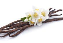 Les avantages de la vanille